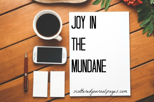 Joy in the Mundane