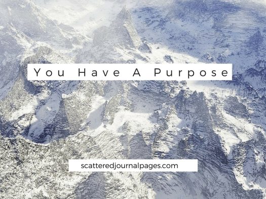 You Have A Purpose-2