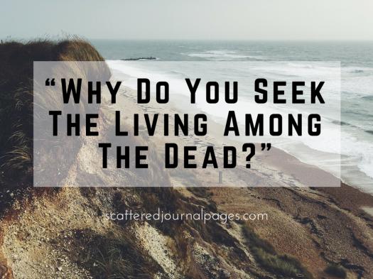 Why Do You Seek