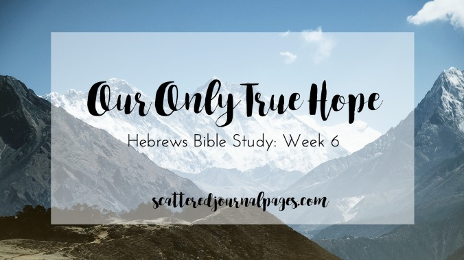 Our Only True Hope (Hebrews Bible Study- Week 6)