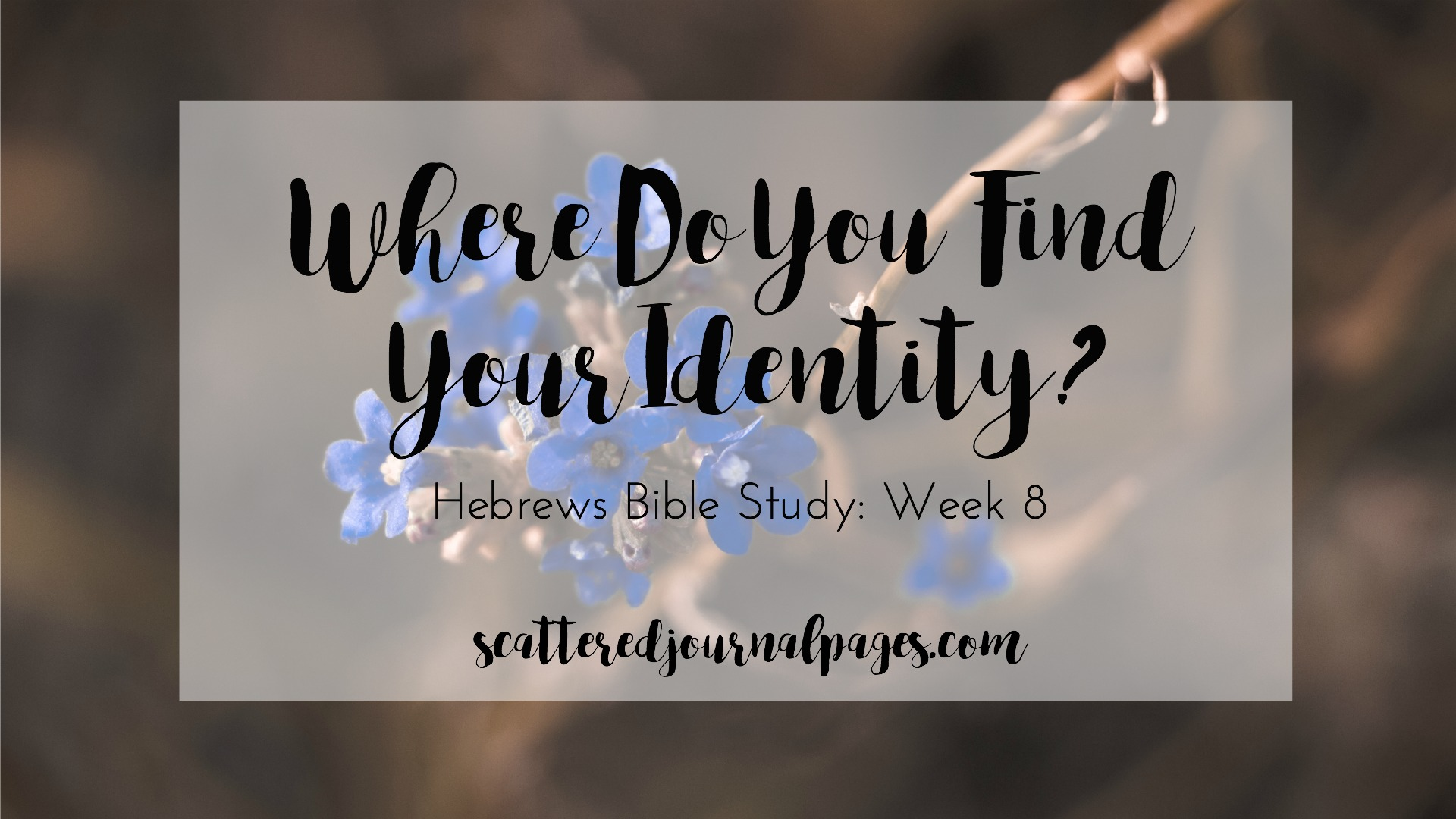 Where Do You Find Your Identity? (Hebrews Bible Study ...